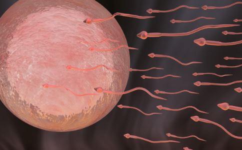 做精液检查要注意什么 做精液检查有什么注意事项 做精液检查项目有哪些