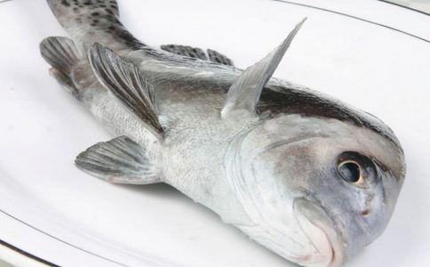 南宁破海鲜走私案 海鲜走私案 如何挑选新鲜的海鲜