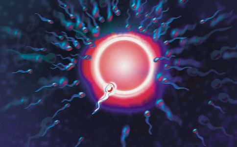 排卵期排卵是白天排还是晚上排 女性排卵期间要注意什么 女性排卵期是什么时候