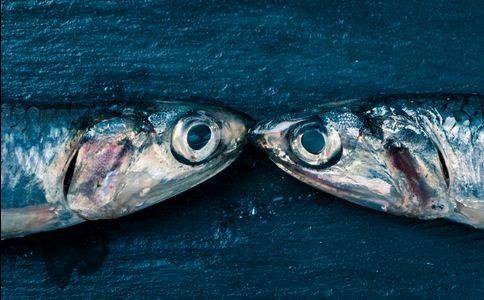 钓获150斤巨型青鱼 青鱼有哪些营养 青鱼有什么营养