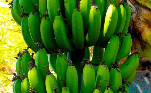 香蕉新吃法 香蕉吃不完该怎么处理 香蕉吃不完可以做什么