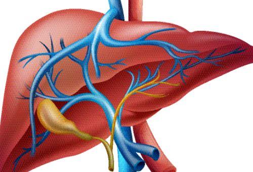 乙肝大三陽如何預防性傳播 世界肝炎日 乙肝大三陽傳播