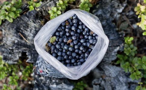 蓝莓的营养价值高吗 吃蓝莓的好处有哪些 吃蓝莓都有哪些好处