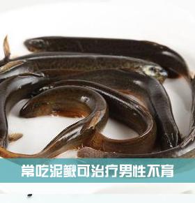 常吃泥鳅可治疗澳门巴黎人娱乐官网不育
