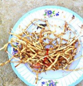夏季吃鱼腥草的好处 鱼腥草的作用 鱼腥草的吃法