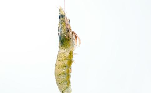 虾尾刺破手指身亡 虾尾刺破手指怎么办 如何处理海虾
