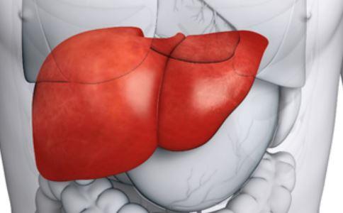 感冒致肝脏衰竭 肝脏衰竭原因 肝脏衰竭是怎么引起的