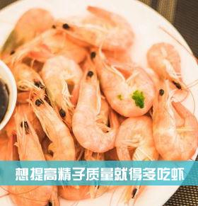 想提高精子质量就得多吃虾