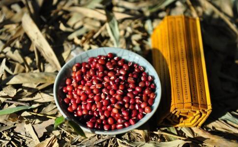 吃红豆有哪些作用 红豆的营养价值有哪些 秋季吃红豆有哪些好处