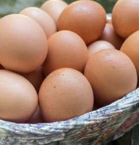 艾草煮蛋 艾草煮蛋的做法 孕妇能吃艾草煮蛋吗