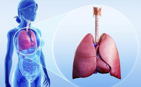 秋燥易威胁肺部健康 秋季如何正确养肺