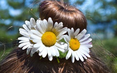 如何养发护发 头发护理的小窍门 如何护理头发