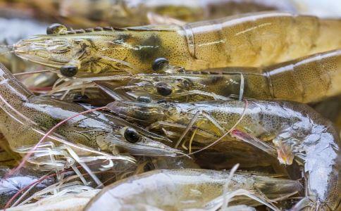 洗海虾划破手遭截肢 海洋创伤弧菌危害 如何预防海洋创伤弧菌
