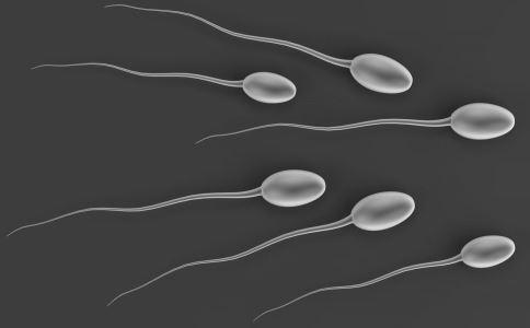 为何精子浓度低 多吃6种补精食物