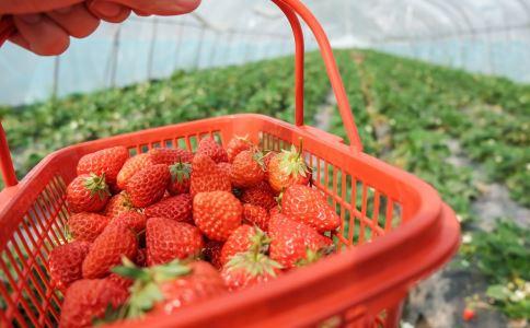 澳草莓里被藏针 草莓富含哪些营养 吃草莓对身体有什么好处