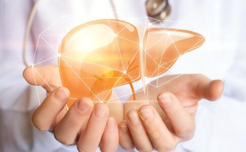 保护肝脏的食物 护肝的食物 什么食物护肝
