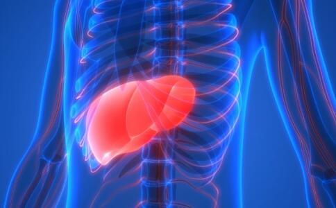 损害肝脏的食物有哪些 养肝食物有哪些 哪些不良习惯损害肝脏