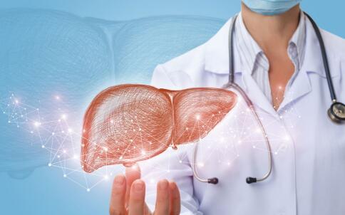 肝脏 生理 常识