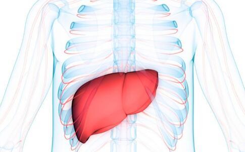 乙肝病情加重的表现 乙肝病情加重症状 乙肝病情