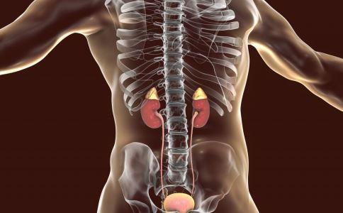 肾病治疗有哪些误区 肾病治疗怎么做 如何预防肾病