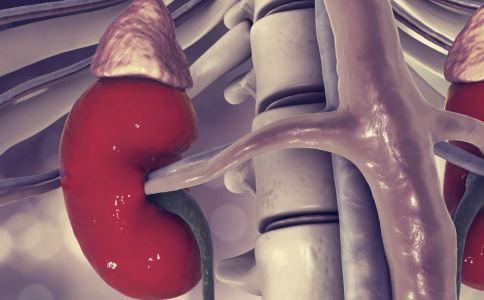 继发性肾病如何治疗 继发性肾病如何引起 肾病怎样预防