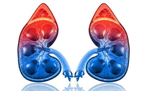 肾炎的早期症状是什么 引起水肿的原因是什么 如何确诊肾炎