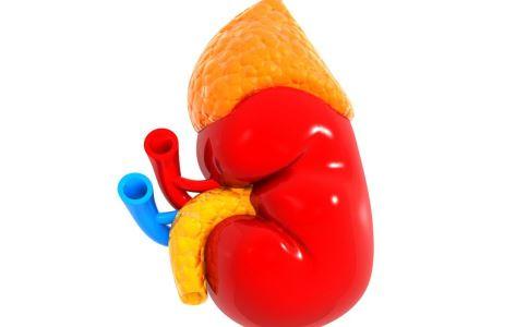 放射性肾炎的症状有哪些 放射性肾炎有什么症状 放射性肾炎怎么饮食