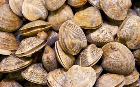 蛤蜊在海滩堆积成山 蛤蜊有什么营养价值