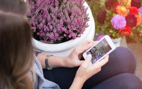 不交手机父母折寿 学生经常玩手机的危害 长期玩手机的危害