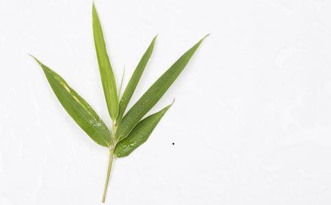 淡竹叶水的功效 淡竹叶和竹叶的区别 淡竹叶的吃法