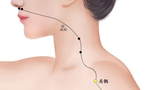 肩�k穴位的准确位置图 肩�k穴的具体位置 肩�k穴在哪里