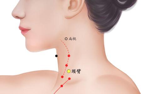 颈臂穴位的准确位置图 颈臂穴的具体位置 颈臂穴在哪里