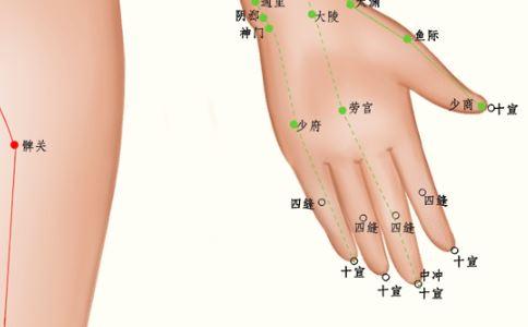 手部穴位图 手部穴位图片 左手穴位图片