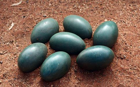 1颗鸟蛋卖到150元 鸟蛋对人有什么好处 鸸鹋蛋图片