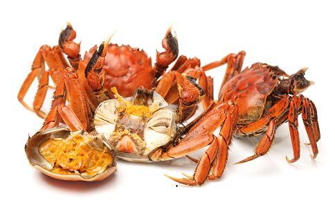 胆固醇过高的危害 哪些食物胆固醇含量高 胆固醇最高的食物