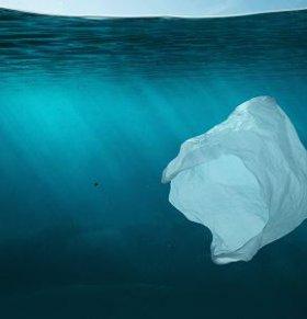 可以吃的吸管 塑料包装袋的危害 塑料食品包装袋对健康有什么影响