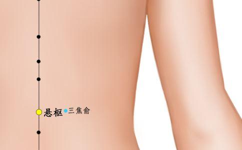 悬枢穴位图 悬枢穴位的准确位置图 悬枢穴