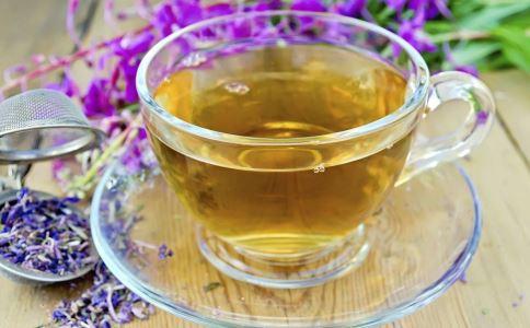苦丁茶的副作用 哪些人不能喝苦丁茶 如何正确泡苦丁茶
