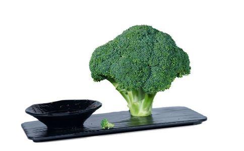 如何减肥 怎么减肥好 减肥吃什么