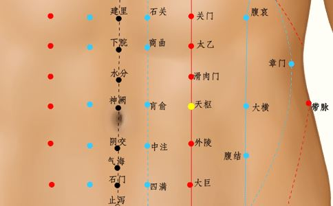 天枢穴穴位的准确位置图 天枢穴的准确位置图 天枢穴位置图