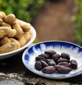 核桃不可以和什么食物同食 核桃与什么食物不能同食 核桃不能和什么食物同食