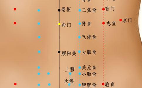 命门穴位的准确位置图 命门穴的准确位置图 命门准确位置图