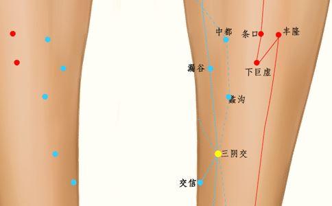 三阴交穴位准确位置图 三阴交穴位位置图 三阴交位置图片