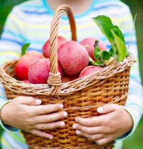 女性冬季养生要注意哪些 冬季女性养生的原则 冬季养生吃什么好