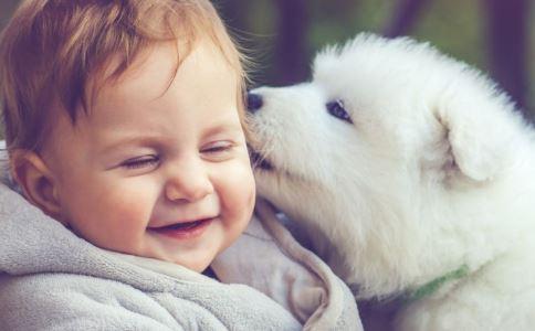 当事申请注册送体验金回应狗舔伤口致男童死亡 狂犬病发作症状 狂犬病潜伏期
