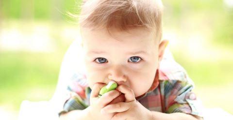 男宝宝私处部位如何清洗 男宝宝的私处怎么清洗才健康 日常怎样护理男宝宝私处