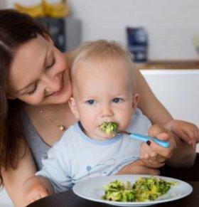 宝宝不爱吃饭是什么原因 宝宝不爱吃饭该怎么办 宝宝不爱吃饭的解决方法