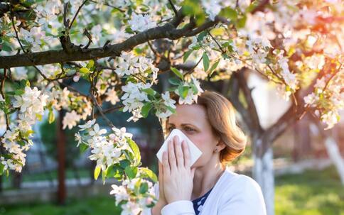春季如何预防过敏性鼻炎 为什么春季会出现过敏性鼻炎 治疗过敏性鼻炎的方法