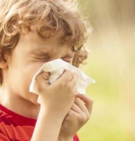 俄罗斯制造出独特鼻炎治疗的药物 如何预防鼻炎反复发作 如何预防鼻炎