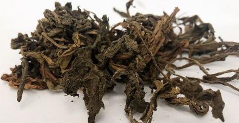 蒲公英泡水喝有什么功效 蒲公英泡水喝的功效有哪些 如何制作蒲公英茶